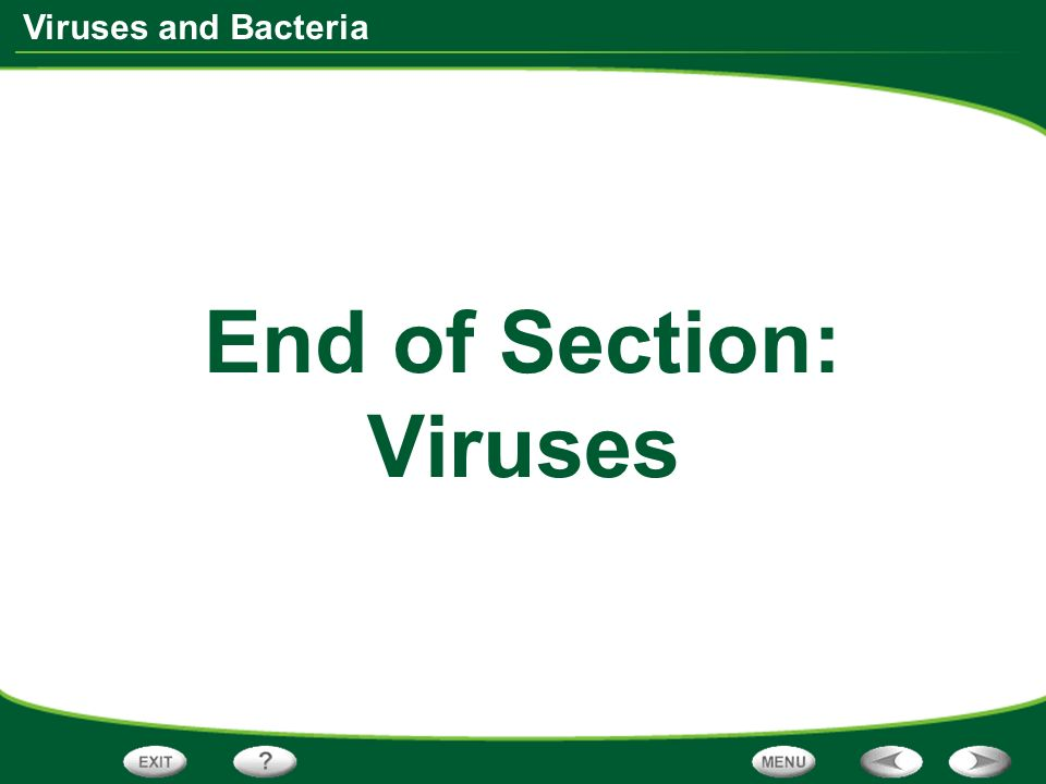 Viruses and Bacteria End of Section: Viruses