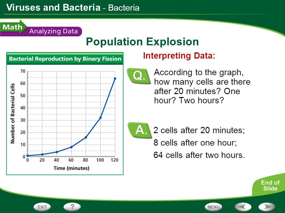 Viruses and Bacteria Population Explosion 2 cells after 20 minutes; 8 cells after one hour; 64 cells after two hours. Interpreting Data: According to