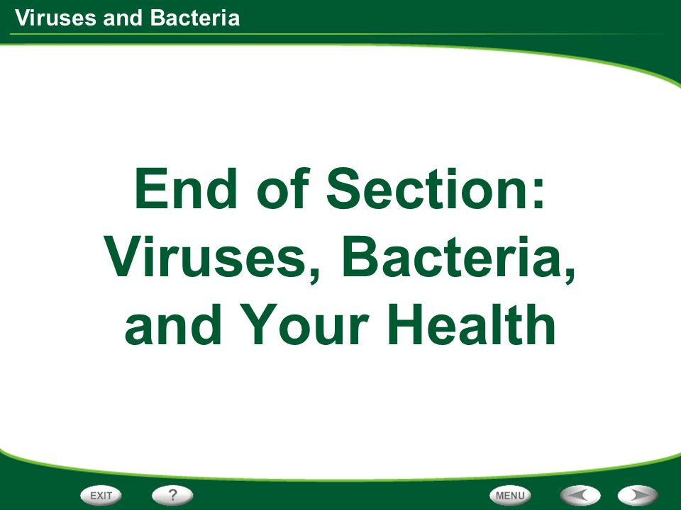Viruses and Bacteria End of Section: Viruses, Bacteria, and Your Health