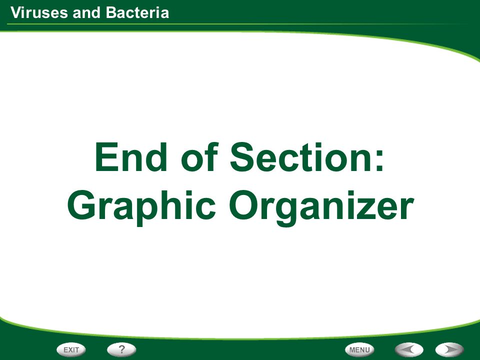 Viruses and Bacteria End of Section: Graphic Organizer