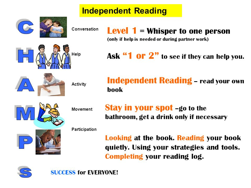 Level 1 = Whisper to one person (only if help is needed or during partner work) Ask 1 or 2 to see if they can help you. Independent Reading – read you