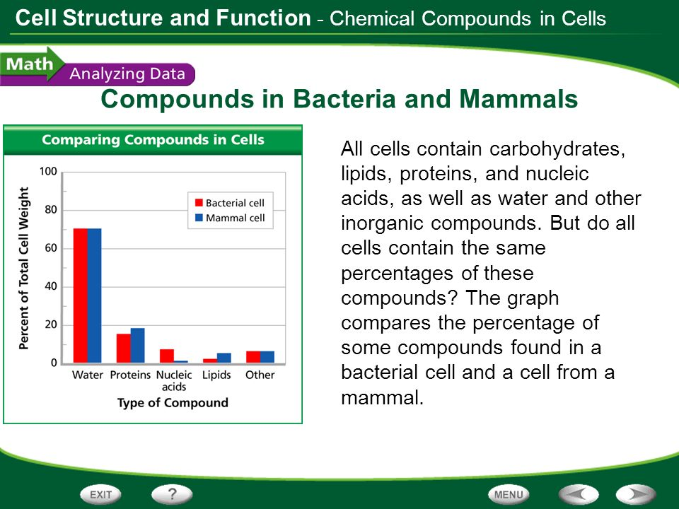 Cell Structure and Function Compounds in Bacteria and Mammals All cells contain carbohydrates, lipids, proteins, and nucleic acids, as well as water a