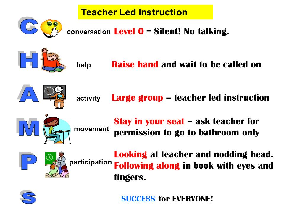 Level 0 = Silent! No talking. Raise hand and wait to be called on Large group – teacher led instruction Stay in your seat – ask teacher for permission