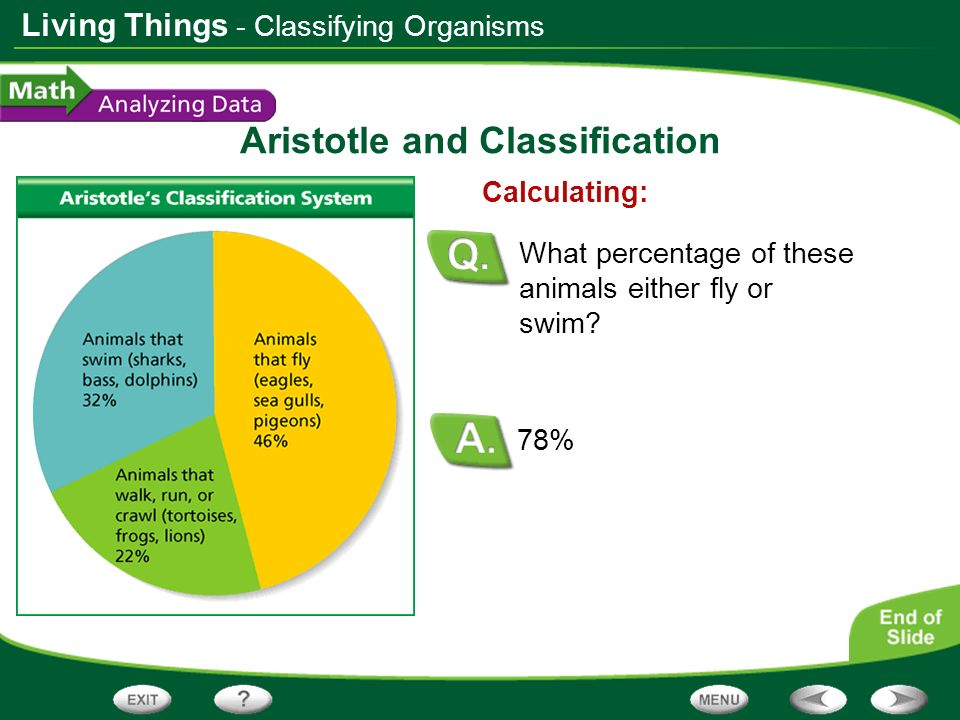 Living Things Aristotle and Classification 78% Calculating: What percentage of these animals either fly or swim? - Classifying Organisms