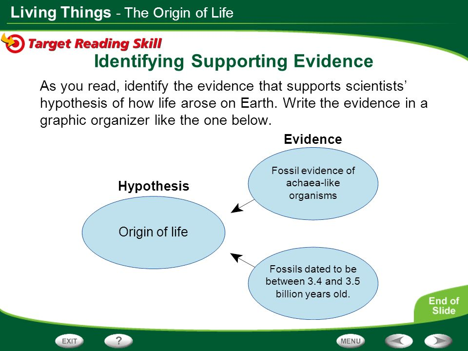 Living Things As you read, identify the evidence that supports scientists hypothesis of how life arose on Earth. Write the evidence in a graphic organ