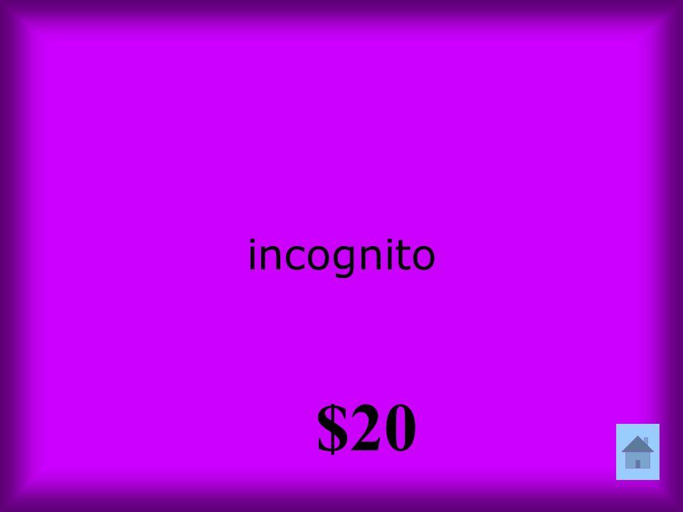 incognito $20