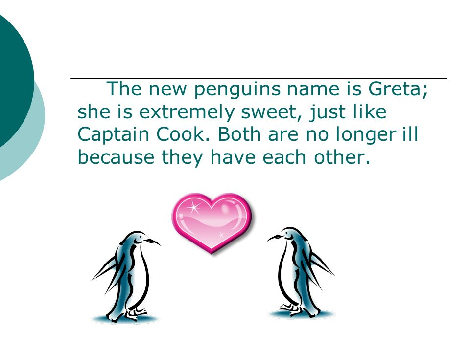 The new penguins name is Greta; she is extremely sweet, just like Captain Cook. Both are no longer ill because they have each other.