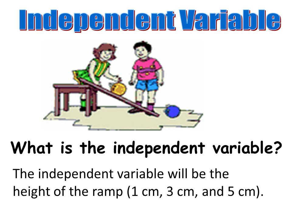 What is the independent variable.