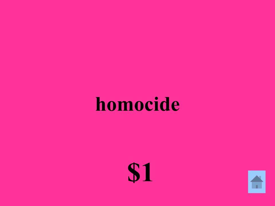 homocide $1