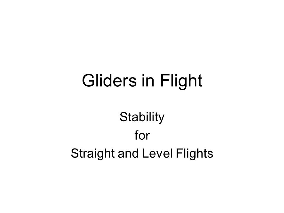 Gliders in Flight Stability for Straight and Level Flights