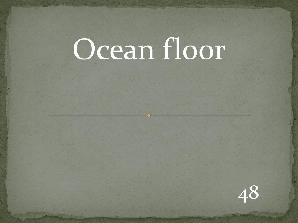 48 Ocean floor