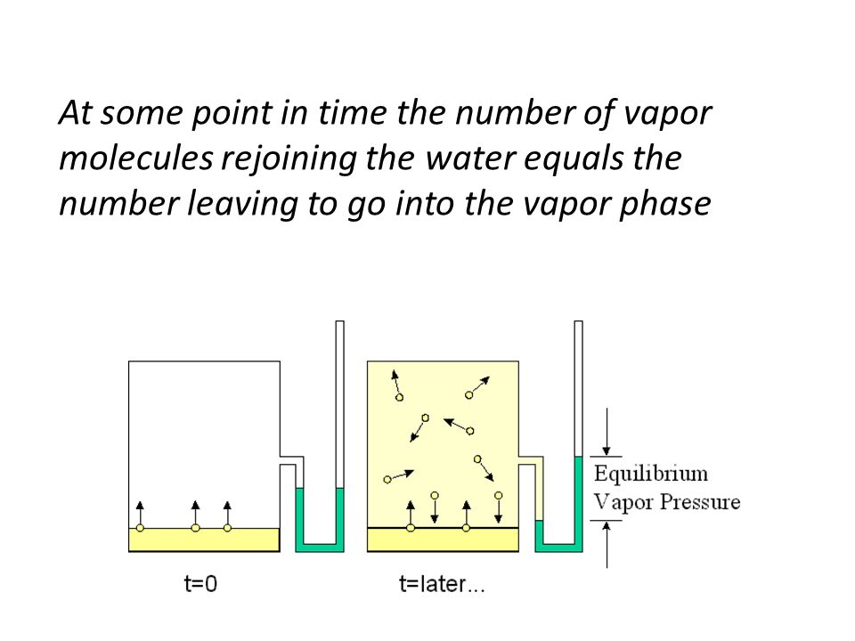 At some point in time the number of vapor molecules rejoining the water equals the number leaving to go into the vapor phase