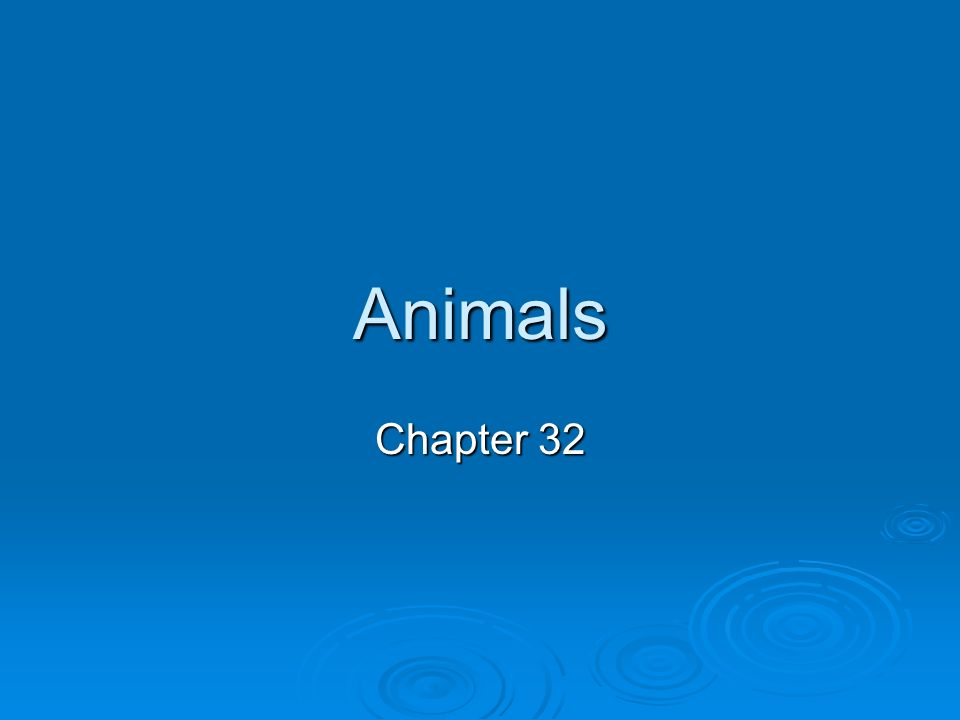 Animals Chapter 32