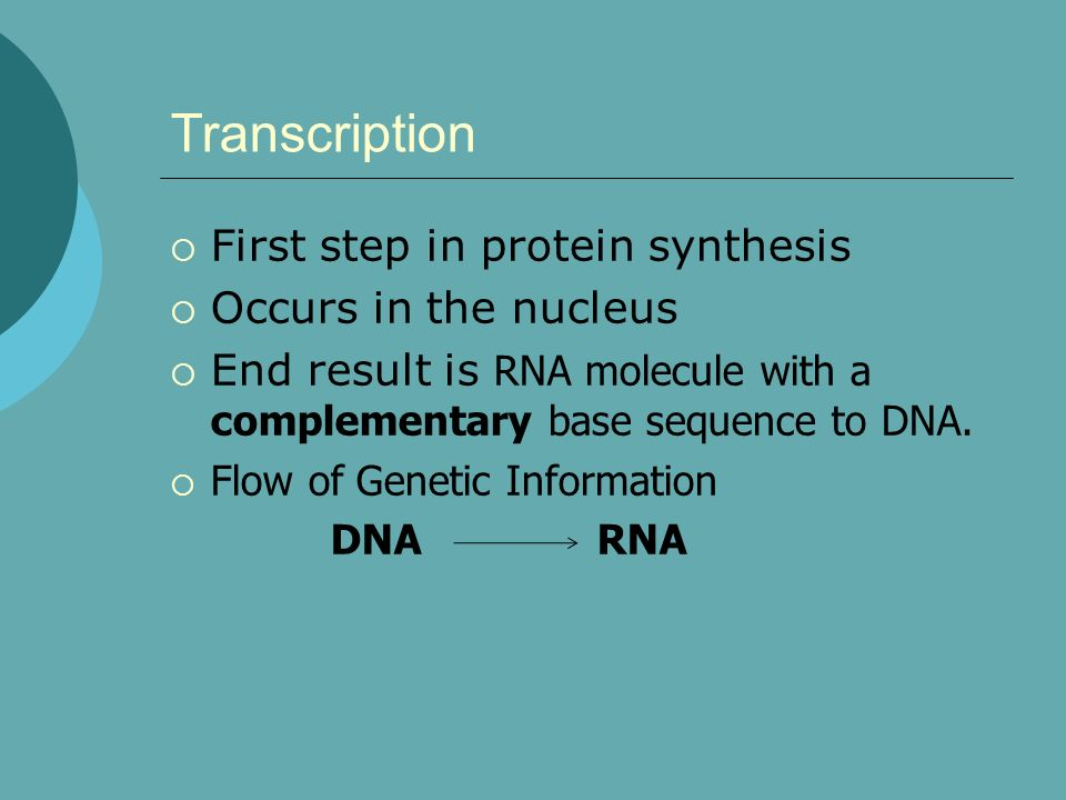 Transcription First step in protein synthesis Occurs in the nucleus End result is RNA molecule with a complementary base sequence to DNA. Flow of Gene