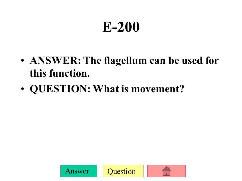 Question Answer E-100 ANSWER: This structure of bacteria protects the cell and gives it shape.
