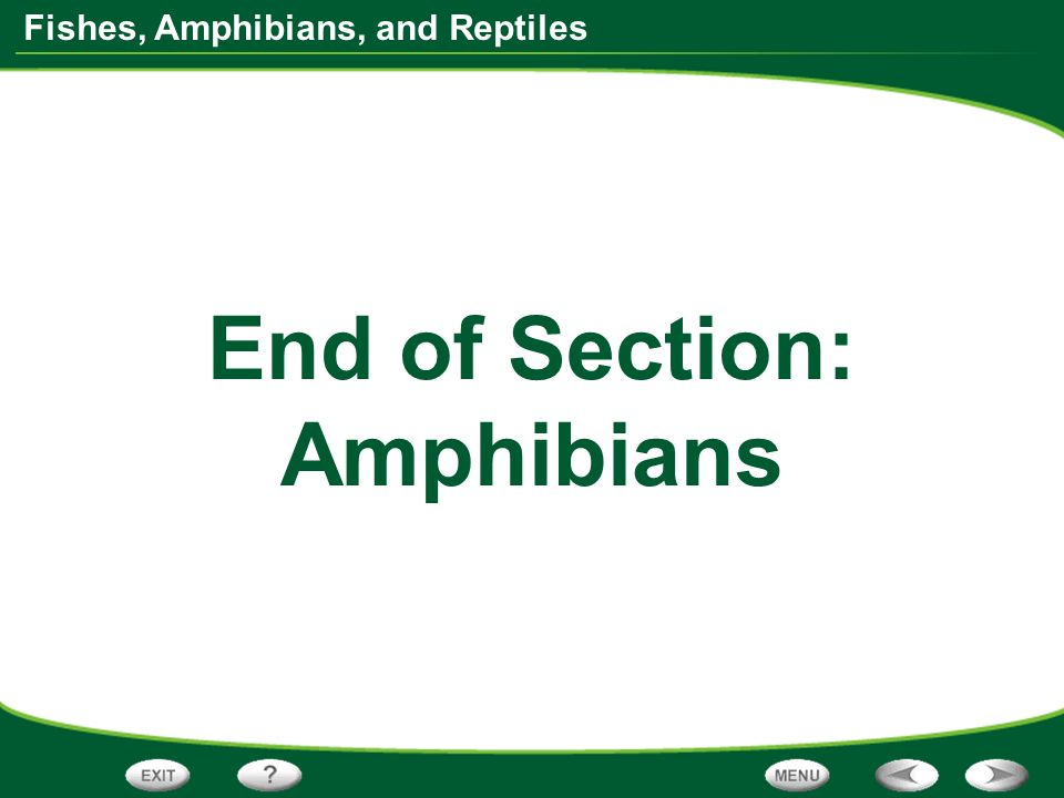 Fishes, Amphibians, and Reptiles End of Section: Amphibians