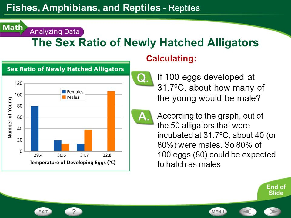 Fishes, Amphibians, and Reptiles The Sex Ratio of Newly Hatched Alligators According to the graph, out of the 50 alligators that were incubated at 31.