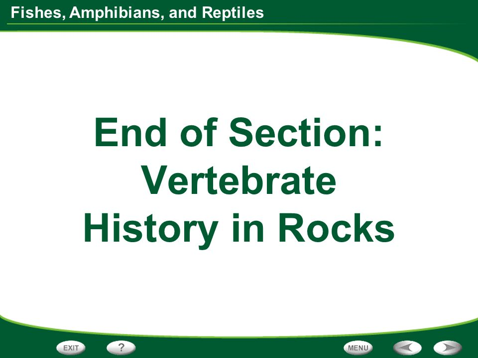 Fishes, Amphibians, and Reptiles End of Section: Vertebrate History in Rocks