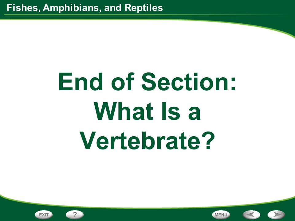 Fishes, Amphibians, and Reptiles End of Section: What Is a Vertebrate?