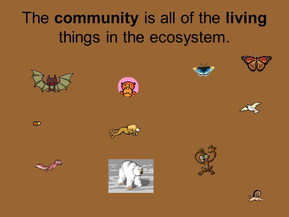 ECOSYSTEM An ecosystem includes all the living (biotic) and nonliving (abiotic) things in a given area.
