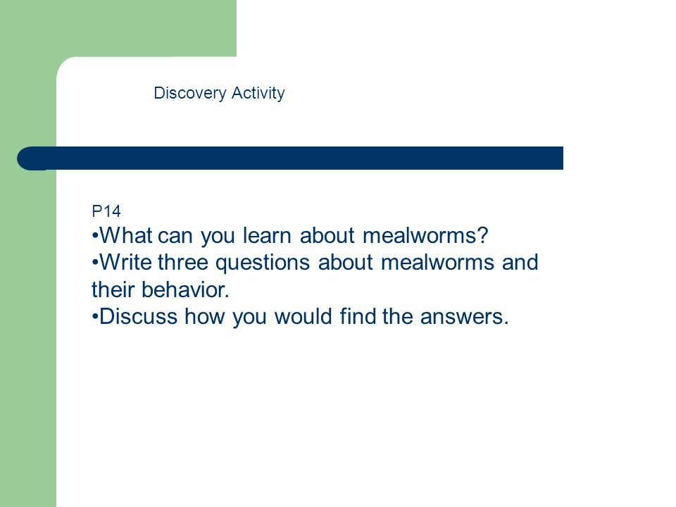 Discovery Activity P14 What can you learn about mealworms? Write three questions about mealworms and their behavior. Discuss how you would find the an