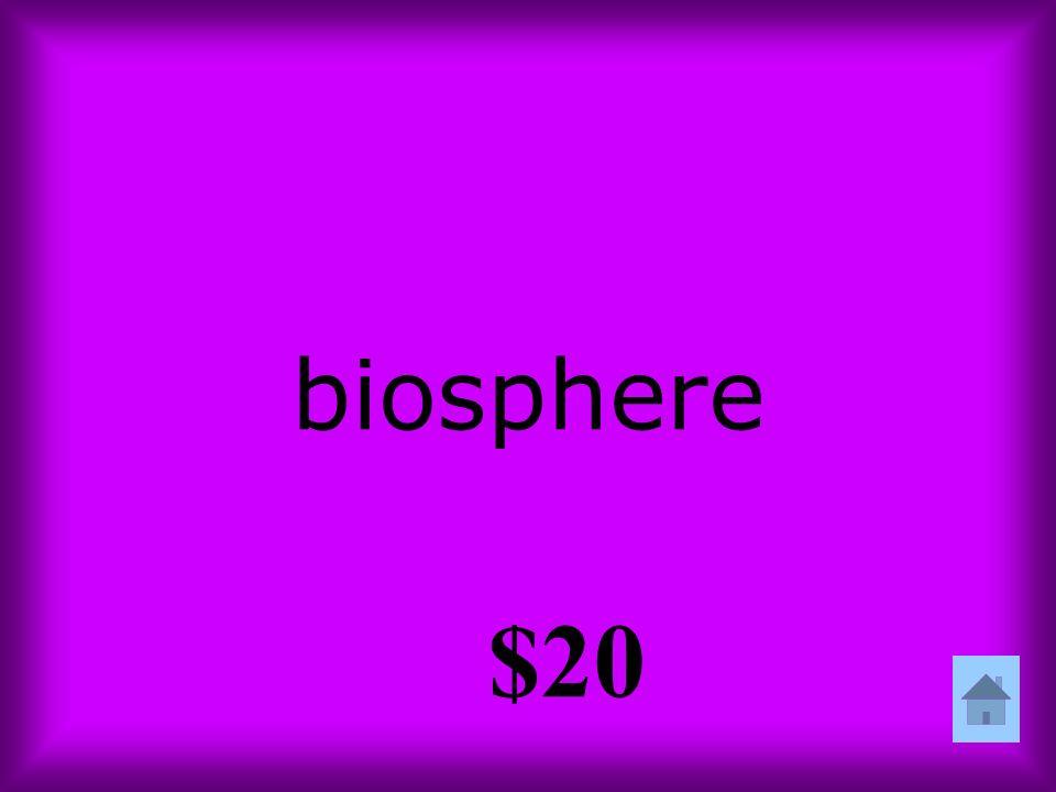 biosphere $20