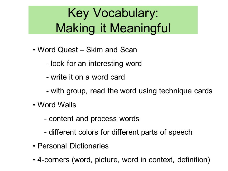 Key Vocabulary: Making it Meaningful Word Quest – Skim and Scan - look for an interesting word - write it on a word card - with group, read the word using technique cards Word Walls - content and process words - different colors for different parts of speech Personal Dictionaries 4-corners (word, picture, word in context, definition)