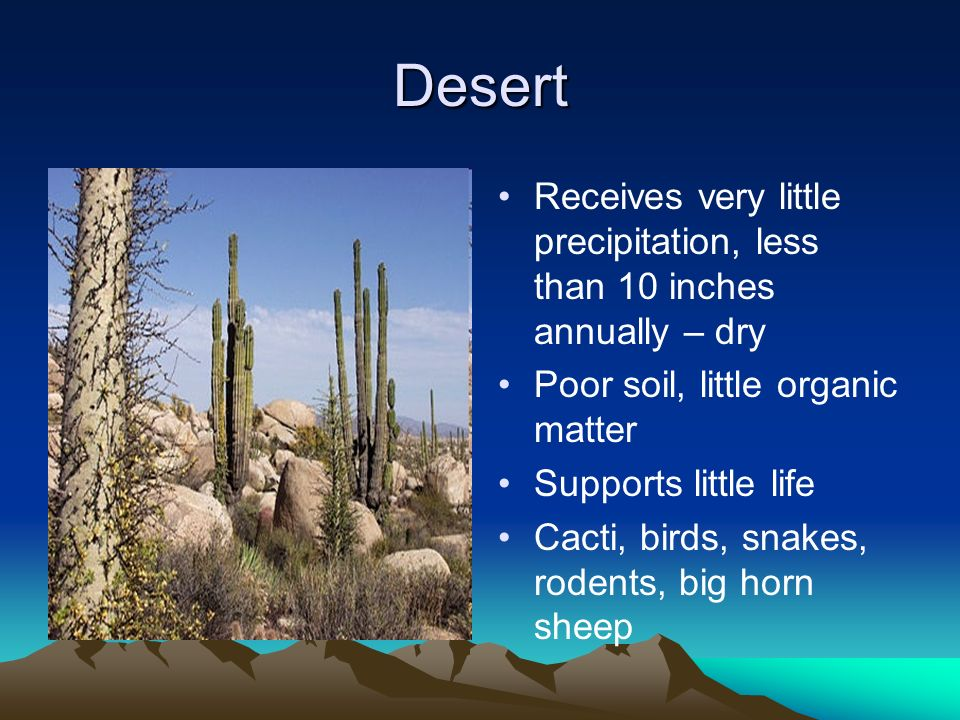 Desert Receives very little precipitation, less than 10 inches annually – dry Poor soil, little organic matter Supports little life Cacti, birds, snak