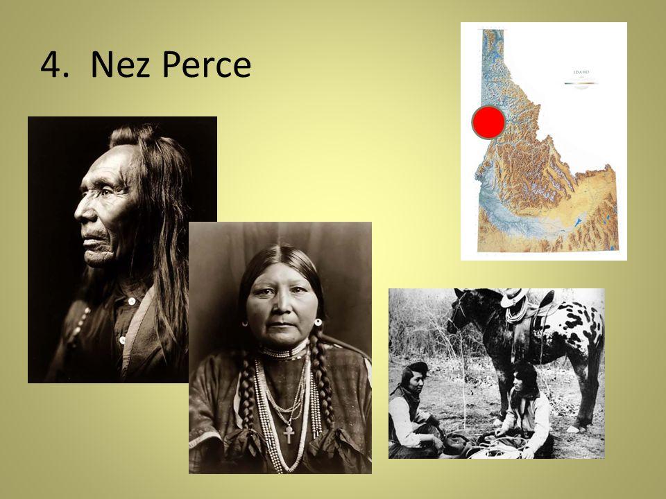 4. Nez Perce