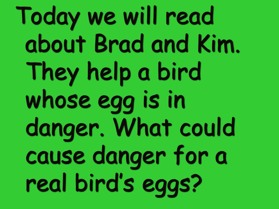 Today we will read about Brad and Kim. They help a bird whose egg is in danger.