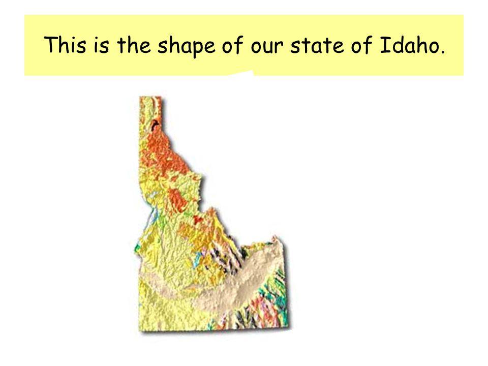 Idahos state raptor is the ____________________ Idahos state tree is the ____________________ Our state fossil is the ____________________ Our state gem is the ____________________