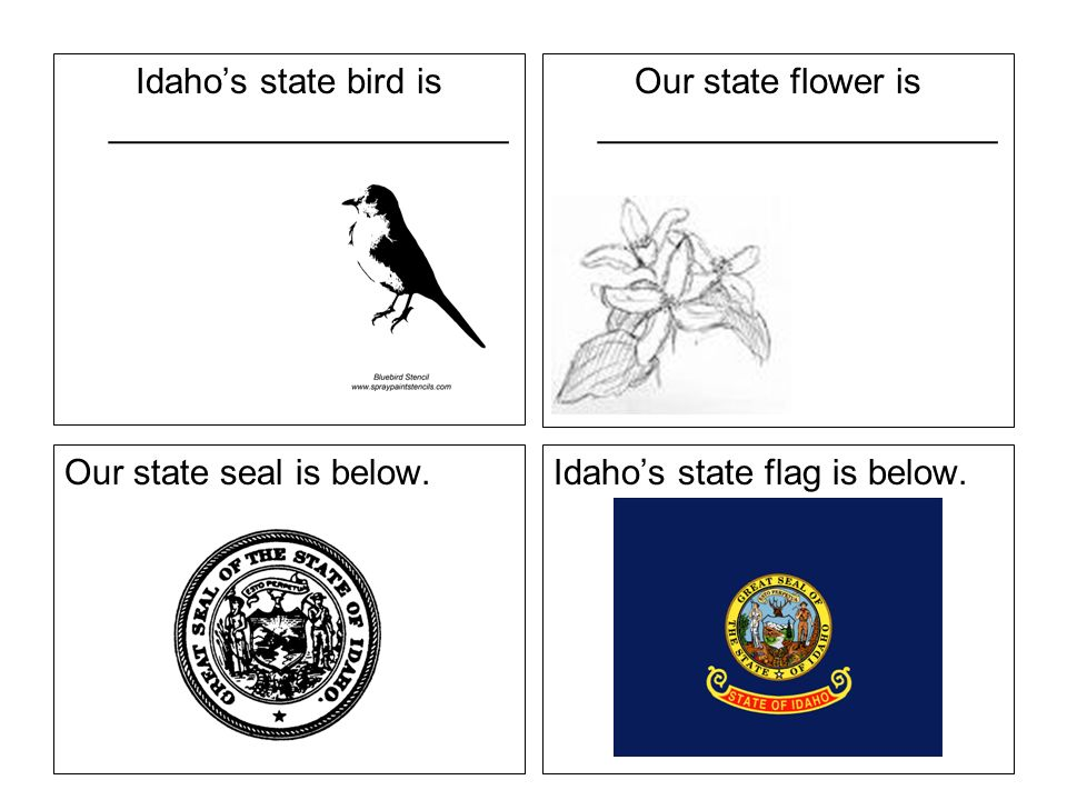 Idahos state bird is ____________________ Our state flower is ____________________ Our state seal is below.Idahos state flag is below.