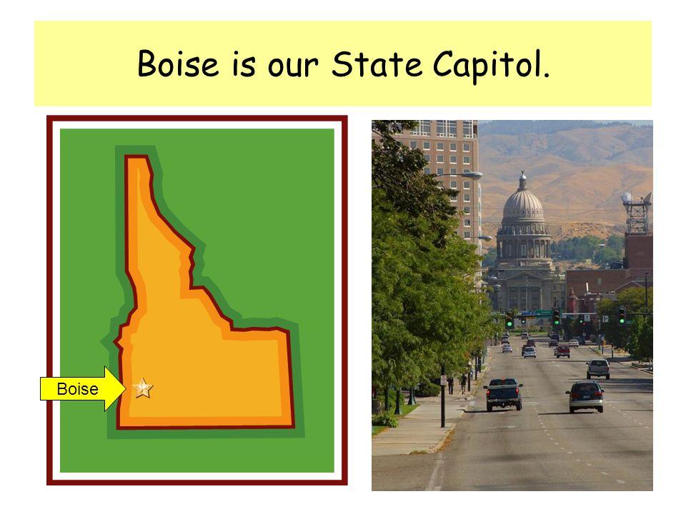 Our state motto is Esto Perpetua Esto Perpetua (Let it be perpetual)
