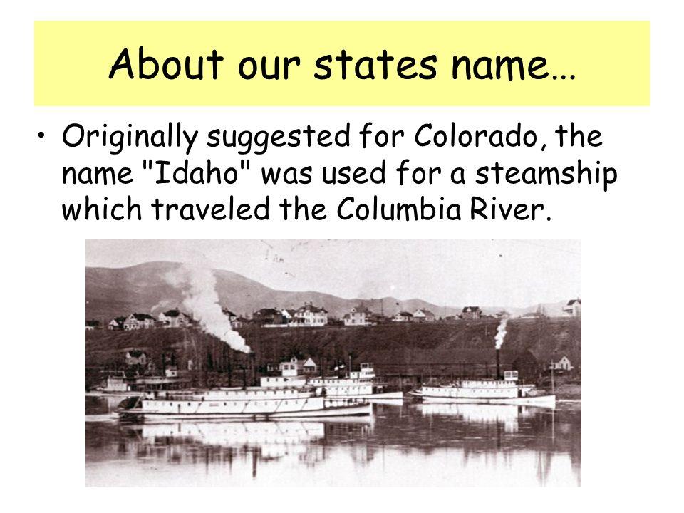 The Western White Pine is Idahos state tree.