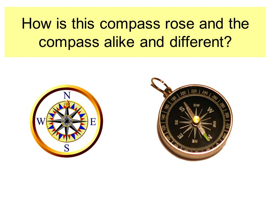 How is this compass rose and the compass alike and different?