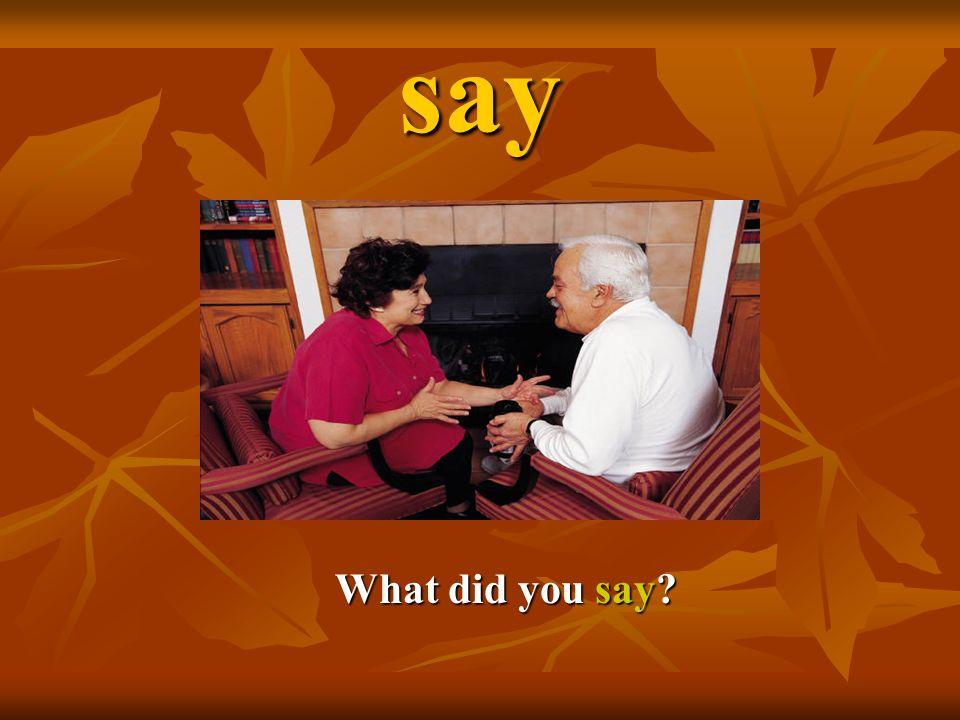 say What did you say? What did you say?