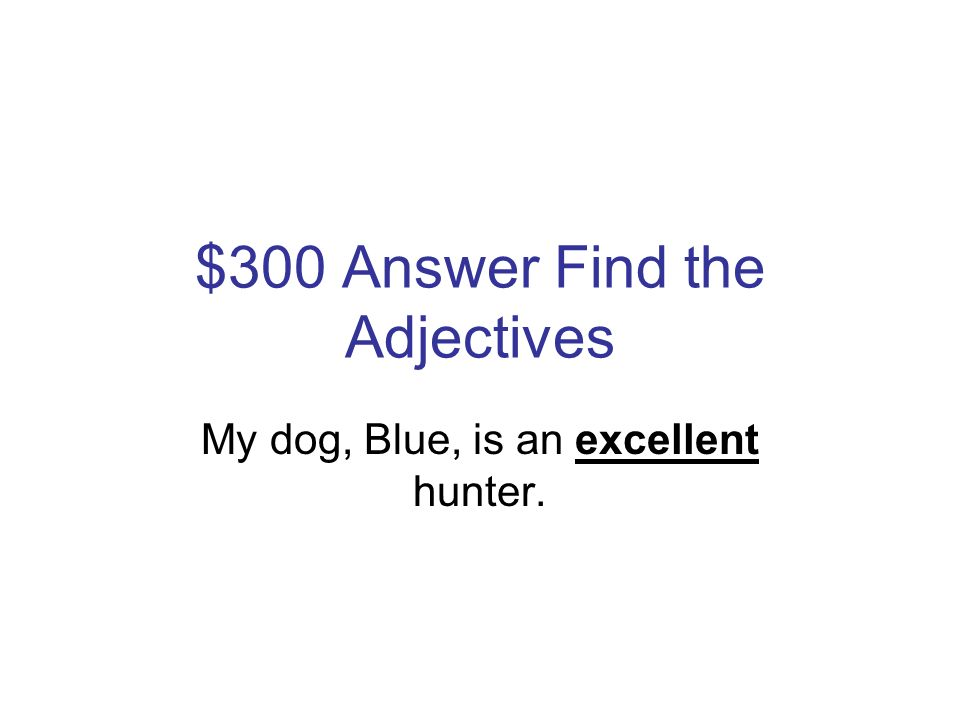 $300 Question Find the Adjectives My dog, Blue, is an excellent hunter.
