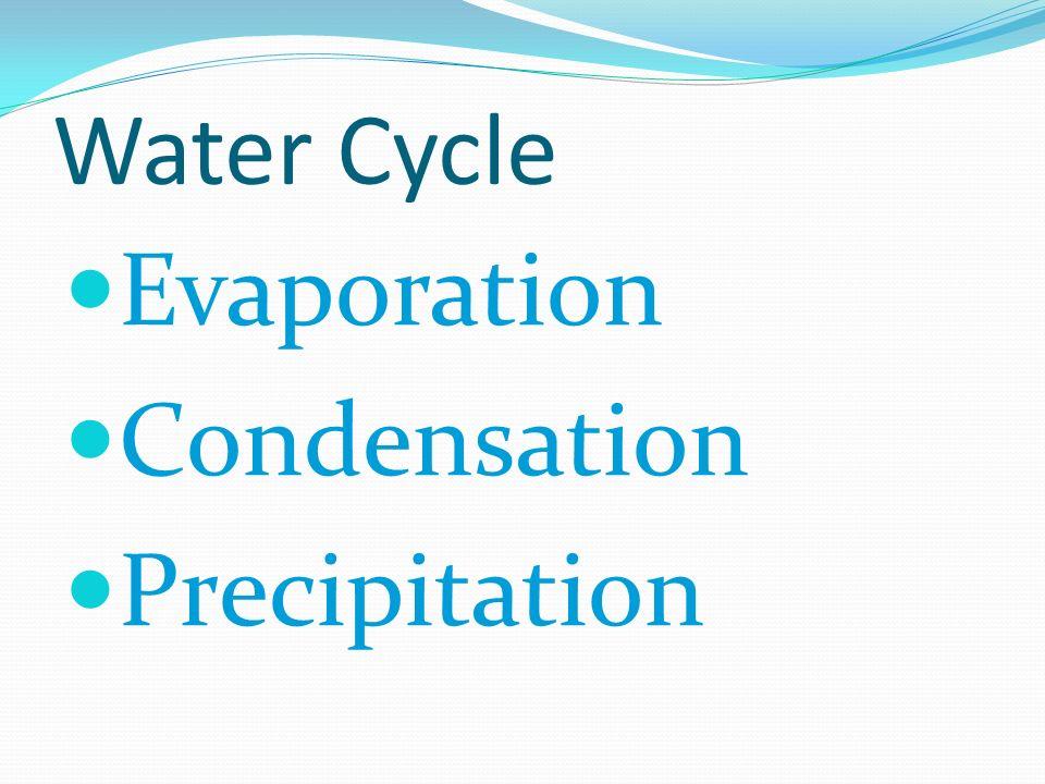 Water Cycle Evaporation Condensation Precipitation