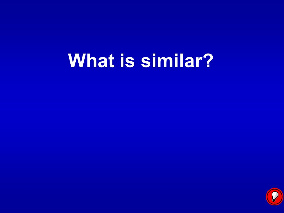 What is similar?