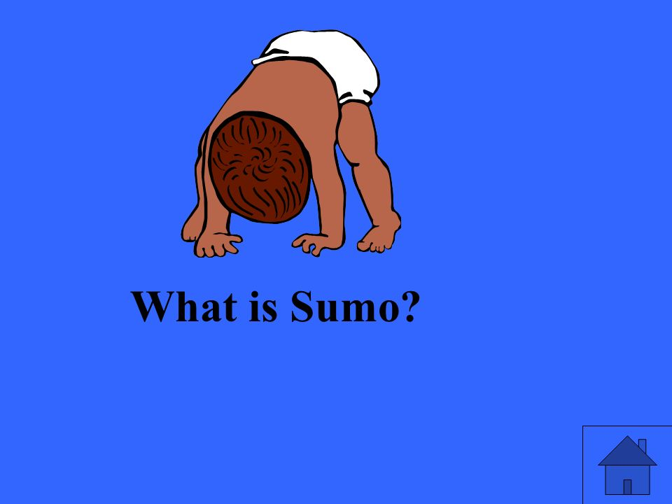 What is Sumo?