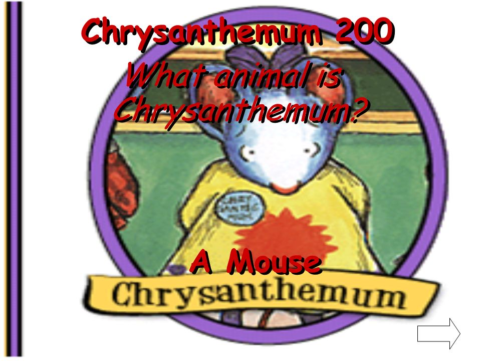 Chrysanthemum 100 What is Chrysanthemum named after A Flower