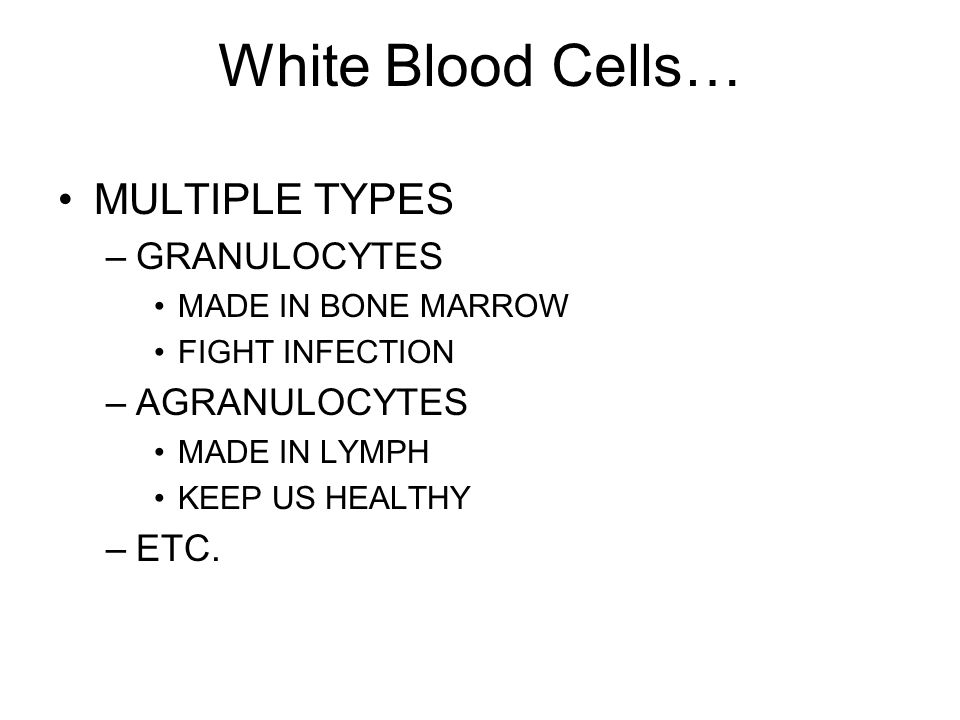 White Blood Cells… MULTIPLE TYPES –GRANULOCYTES MADE IN BONE MARROW FIGHT INFECTION –AGRANULOCYTES MADE IN LYMPH KEEP US HEALTHY –ETC.