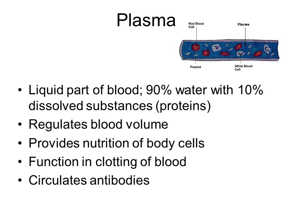 Plasma Liquid part of blood; 90% water with 10% dissolved substances (proteins) Regulates blood volume Provides nutrition of body cells Function in cl