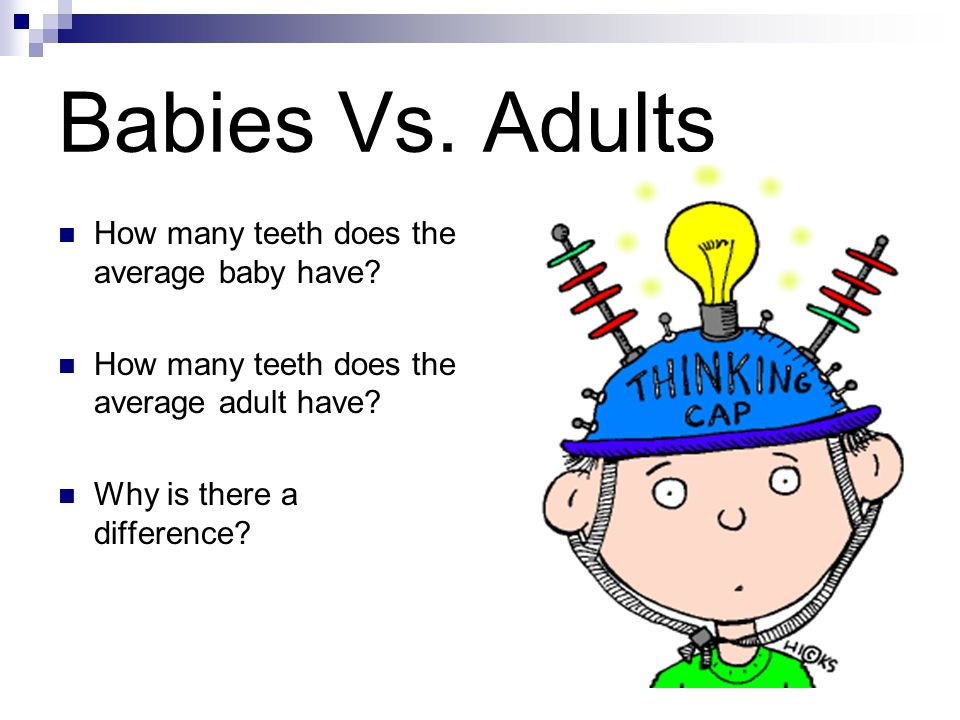 Identify reasons for keeping your mouth healthy. Discuss what causes teeth and gums to become unhealthy. Identify that different teeth have specific f