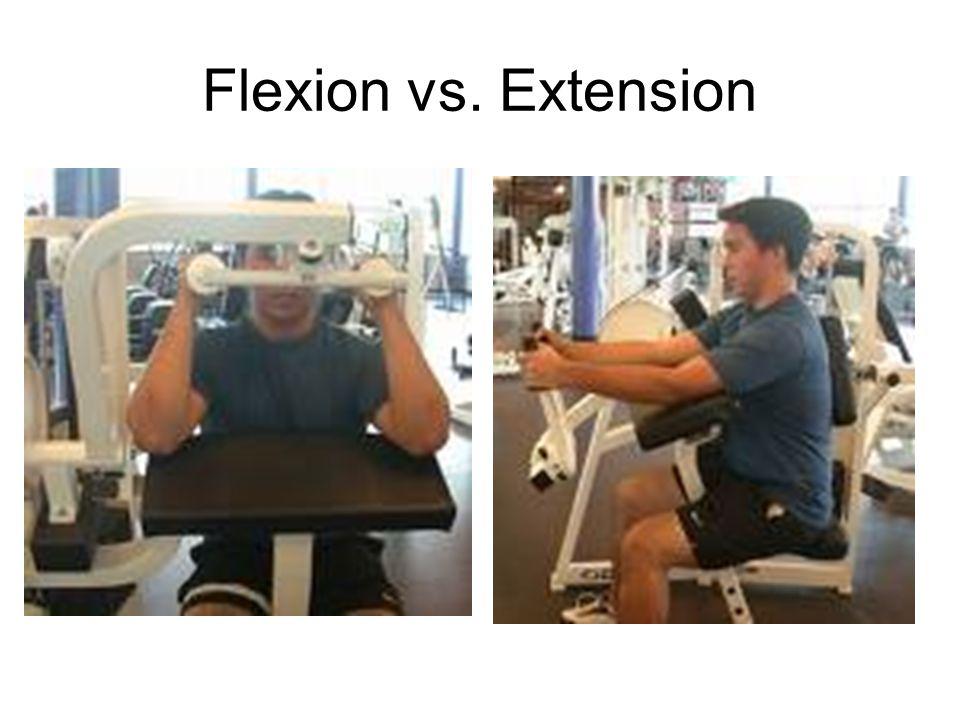 Flexion vs. Extension