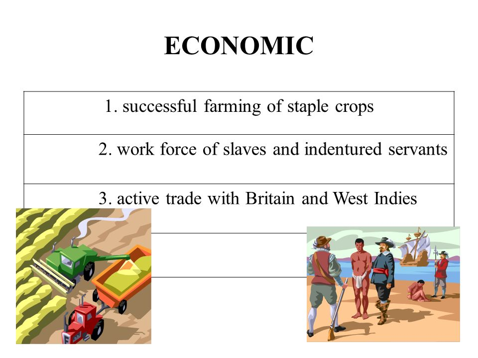 ECONOMIC 1. successful farming of staple crops 2. work force of slaves and indentured servants 3. active trade with Britain and West Indies
