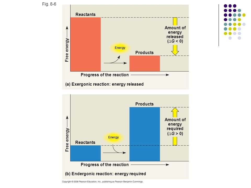 Fig. 8-6 Reactants Energy Free energy Products Amount of energy released (G < 0) Progress of the reaction (a) Exergonic reaction: energy released Prod
