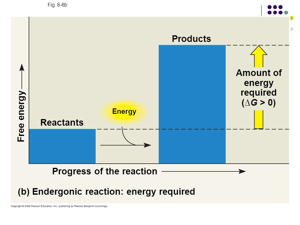 Fig. 8-6b Energy (b) Endergonic reaction: energy required Progress of the reaction Free energy Products Amount of energy required (G > 0) Reactants