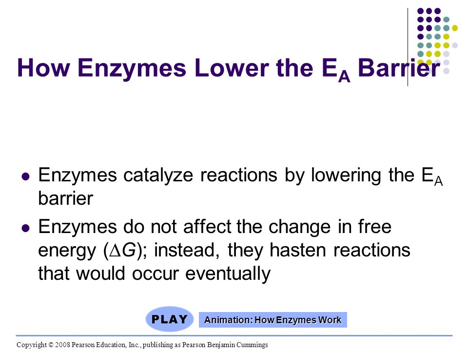 How Enzymes Lower the E A Barrier Enzymes catalyze reactions by lowering the E A barrier Enzymes do not affect the change in free energy (G); instead,
