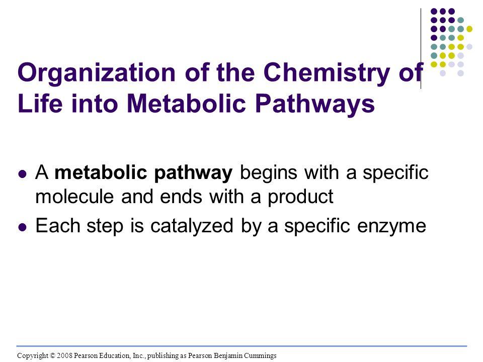 Fig. 8-UN1 Enzyme 1Enzyme 2Enzyme 3 D CB A Reaction 1Reaction 3Reaction 2 Starting molecule Product